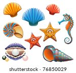 vector collection of sea shells ... | Shutterstock .eps vector #76850029