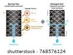 comparison illustration of... | Shutterstock .eps vector #768576124