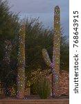 Three Saguaro Cacti Decorated...