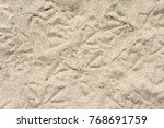 Sand With Seagull Tracks...
