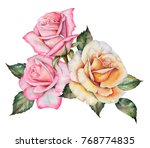 watercolor bouquet of roses and ... | Shutterstock . vector #768774835