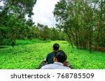 dong thap  vietnam   nov 15...   Shutterstock . vector #768785509