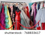 many ladies evening gown long... | Shutterstock . vector #768833617