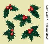 holly berry  mistletoe  set.... | Shutterstock .eps vector #768958891