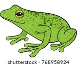 green frog vector illustration  | Shutterstock .eps vector #768958924