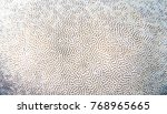 white coral texture. tropical... | Shutterstock . vector #768965665