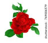 stem flower red rose and leaves ... | Shutterstock .eps vector #769006579