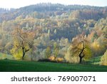 foggy autumn landscape with...   Shutterstock . vector #769007071