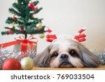 Cute Shih Tzu Dog In Reindeer...