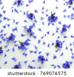 Blue Flowers Cornflowers...
