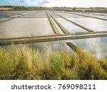 salt marshes in guerande...   Shutterstock . vector #769098211