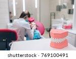 dentistry  medical equipment of ... | Shutterstock . vector #769100491