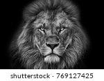 Lion Portrait Black And White...