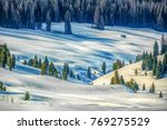 Hdr Landscape Of Pine Woods By...