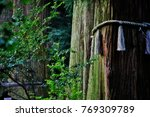 Stock photo takachiho shrine takachiho jinja a shinto shrine dedicated to takachihosumegami and 769309789