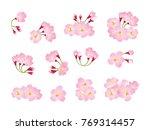 full bloom white and pink... | Shutterstock .eps vector #769314457