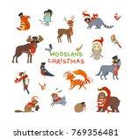 woodland christmas. vector set... | Shutterstock .eps vector #769356481