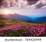awesome alpine valley in warm... | Shutterstock . vector #769425949