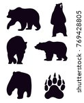 grizzly bear. contour grizzly... | Shutterstock .eps vector #769428805