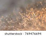 aspergillus  mold  under the... | Shutterstock . vector #769476694