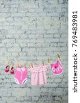 a children's pink bodik  a bib  ... | Shutterstock . vector #769483981