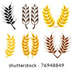 set of cereal ears   wheat and... | Shutterstock .eps vector #76948849