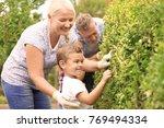 elderly couple with grandson... | Shutterstock . vector #769494334