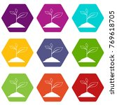 growing plant icon set many...   Shutterstock .eps vector #769618705