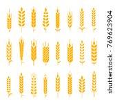 wheat ear symbols for logo...   Shutterstock . vector #769623904