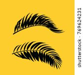 leaves of palm tree. vector...   Shutterstock .eps vector #769624231