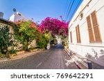 pink bougainvillea flowers in... | Shutterstock . vector #769642291