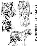 vector drawings sketches... | Shutterstock .eps vector #769722481