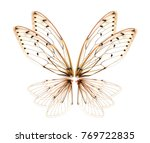 wings of insect cicada on white ... | Shutterstock . vector #769722835