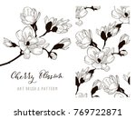 cherry blossom hand drawn... | Shutterstock .eps vector #769722871