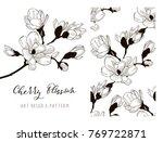 cherry blossom hand drawn... | Shutterstock .eps vector #769722871