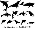 set of whale  killer whale ...