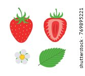 red berry strawberry and a half ...   Shutterstock .eps vector #769895221