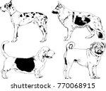vector drawings sketches... | Shutterstock .eps vector #770068915
