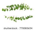 Decorative Eucalyptus Green...