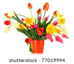 pink tulips on white background | Shutterstock . vector #77019994