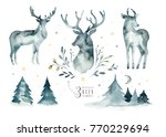 watercolor closeup portrait of...   Shutterstock . vector #770229694