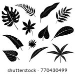silhouettes of tropical leaves. | Shutterstock . vector #770430499