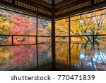 autumn reflection in ancient... | Shutterstock . vector #770471839