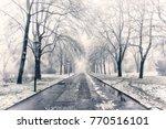 misty morning in the winter... | Shutterstock . vector #770516101