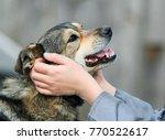 hands devocional the face of a... | Shutterstock . vector #770522617
