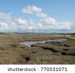 wildlife refuge on salt marshes ... | Shutterstock . vector #770531071