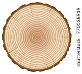 tree trunk annual rings section ... | Shutterstock .eps vector #770538919