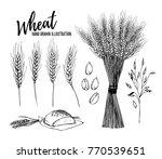 hand drawn vector illustration  ... | Shutterstock .eps vector #770539651