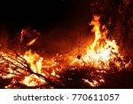 forest fire. fallen tree is... | Shutterstock . vector #770611057