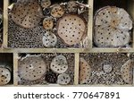 bug hotel in a wooden frame for ... | Shutterstock . vector #770647891
